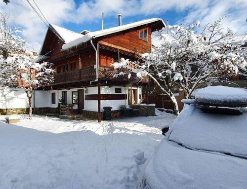 Casă din lemn sau din cărămidă? De ce am cumpăra sau închiria un Tiny House, căsuța din materiale naturale. Top 3 Tiny House din România